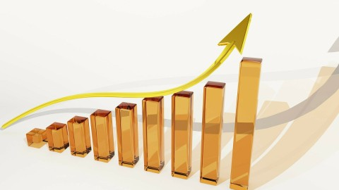 wealth_increase
